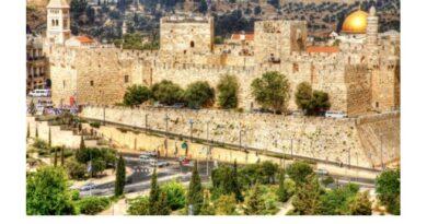 Социальная акция поддержки всем, кто не может сейчас поехать за границу: теплый привет из Израиля с доставкой на дом